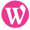 buzzz-it-icons-wordpress