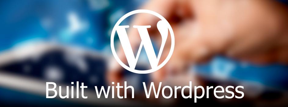 Buzzz-IT-Websites-Slider-Wordpress